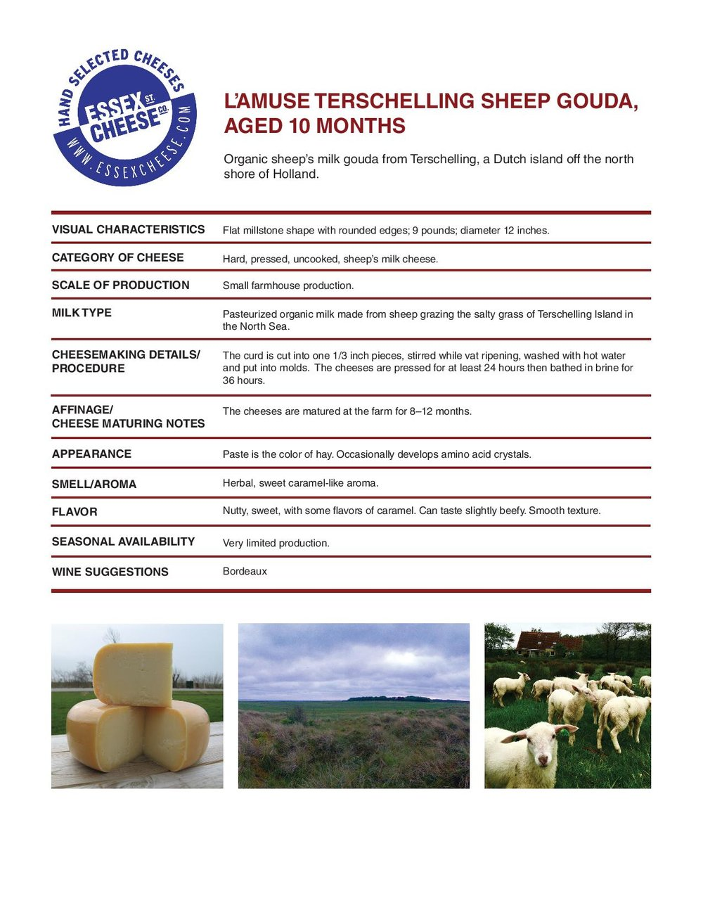 TerschellingSheep Gouda Specifications - Details on the organic sheep's milk gouda from the island of Terschelling. 8.5 x 11 inch PDF to download and print for training and reference.