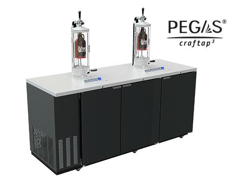 GSE-79-10A-Main-(Bug).jpg