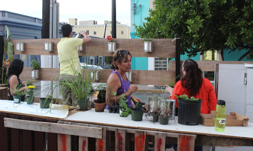 Agroecological Garden Workshops