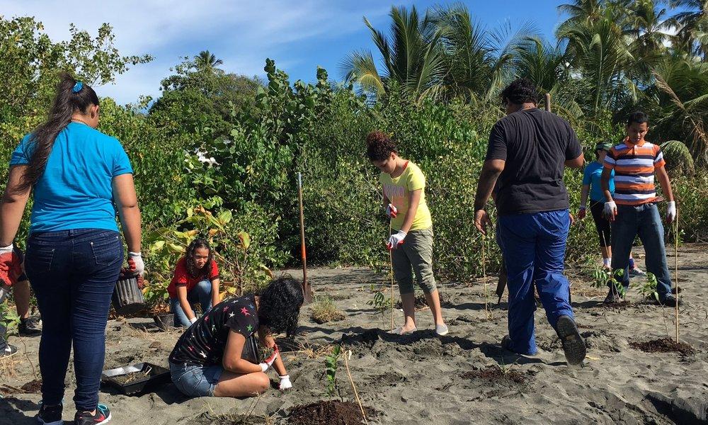 Proyecto de Conservación de la Pradera Marina y Restauración de Vegetación Costera en la Playa de Ponce - Este proyecto fue apoyado financieramente por la Fundación Nacional de Pesca y Vida Silvestre como parte de su continuo esfuerzo en proteger las praderas marinas, un hábitat crítico para especies marinas de importancia comercial y fauna marina protegida federalmente. Varias áreas de las regiones costeras y de mareas de la Playa de Ponce fueron identificadas y modificadas con especies nativas de plantas costeras. En total, fueron transplantados más de 1,000 árboles, arbustos y plantas herbáceas individuales.