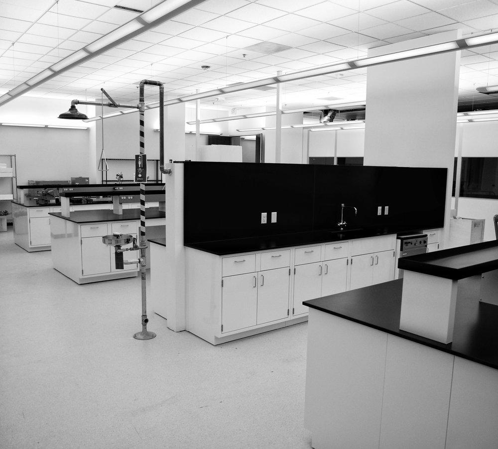Classic Lab Line-2.jpg