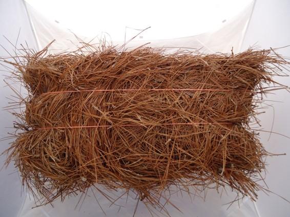 Pine Straw Bale.jpg
