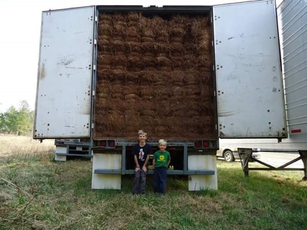 Colton and Grady 2009 Pine Straw Trailer Pic.jpg