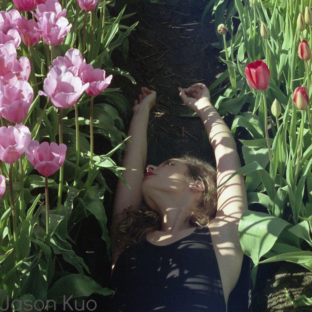Tulips12.jpg