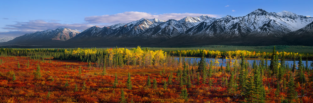 """Fall Paintbrush"" Kluane Mountains, Yukon, Canada"