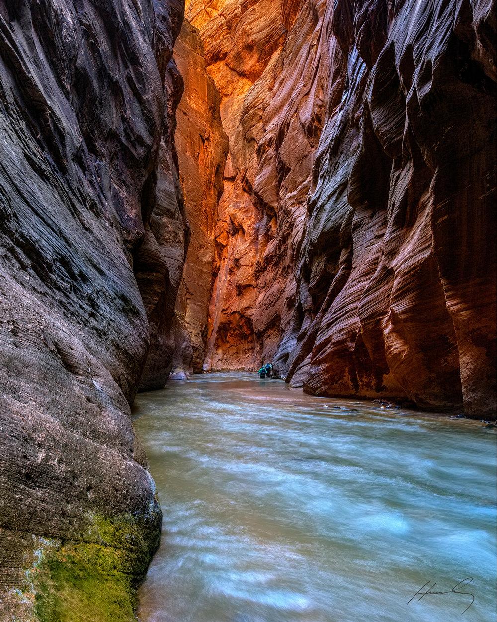 """""""Zion Narrows"""" Zion N. P., Utah"""