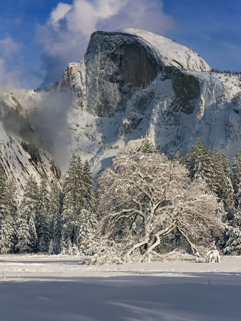 """Half Dome "" Yosemite N. P., California"