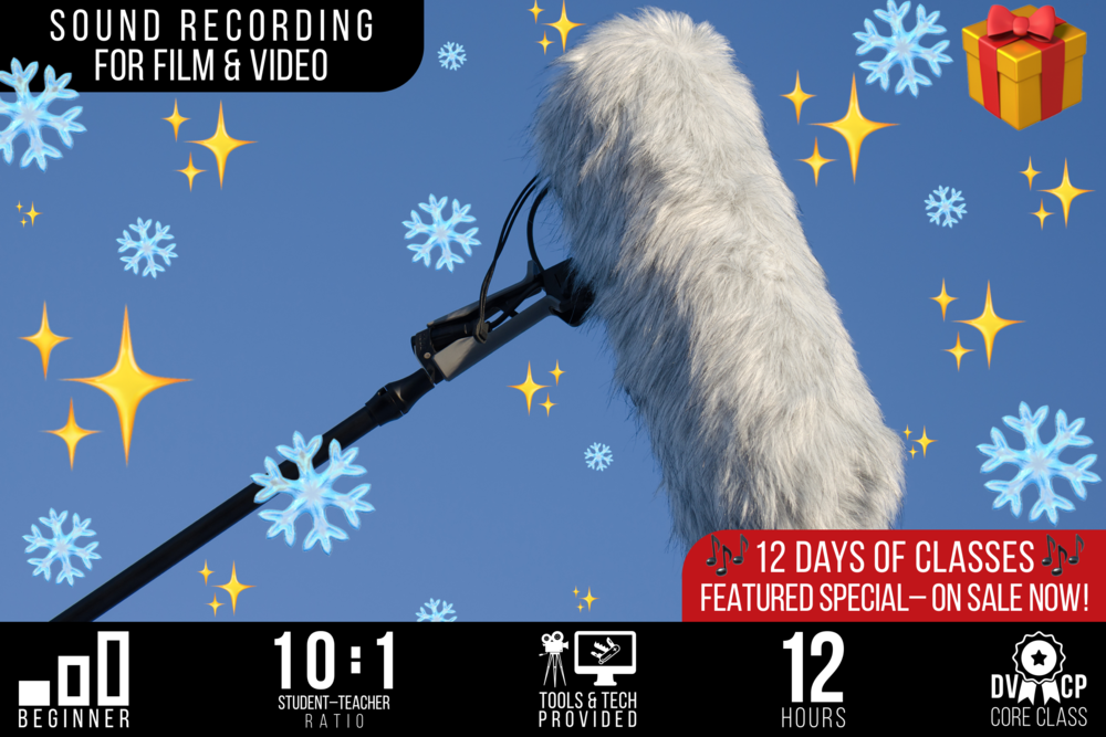 12 DAYS OF CLASSES: Sound Recording for Film & Video