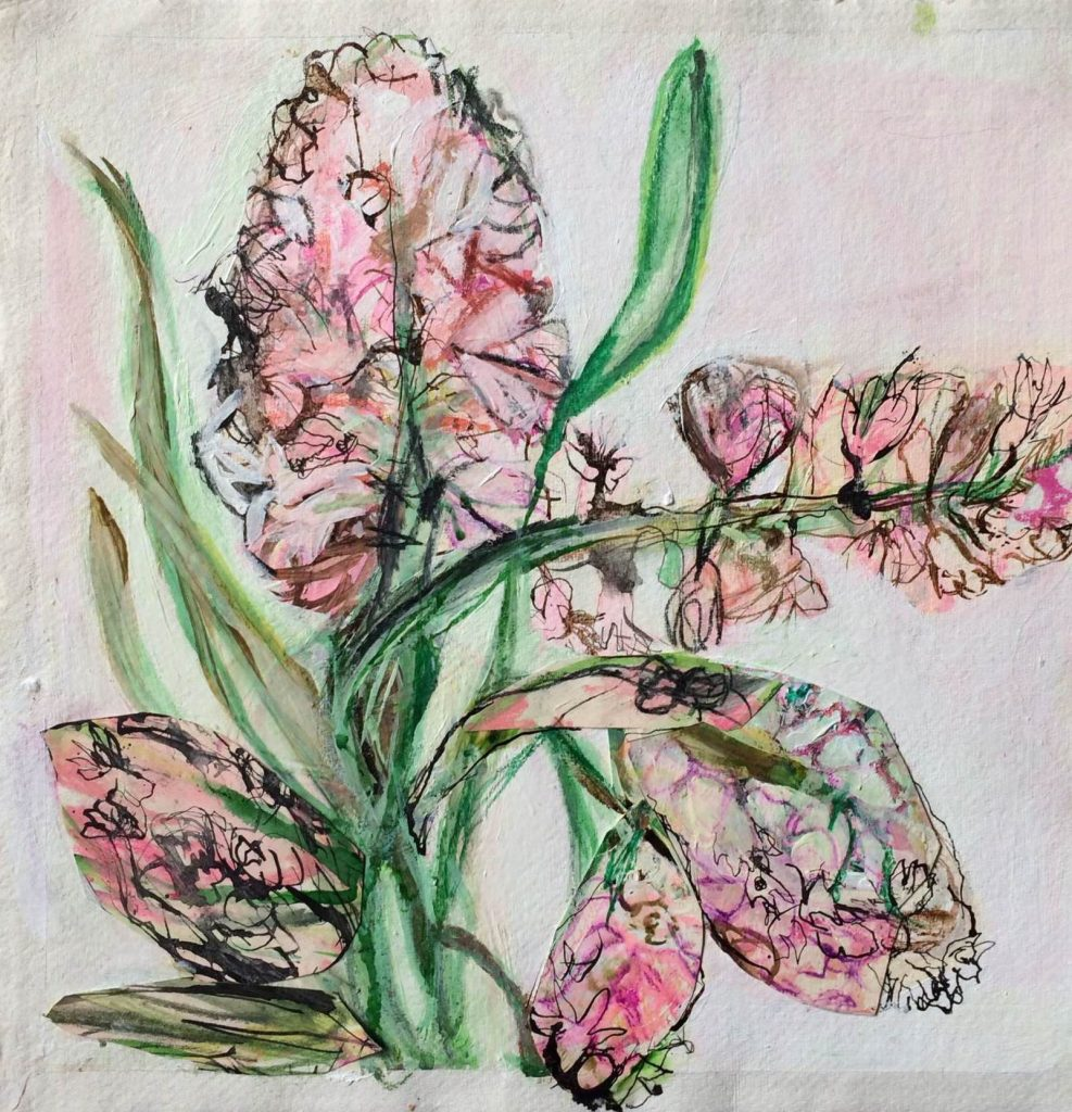 Pink-Pearl-Hyacinth_belin-987x1024.jpg