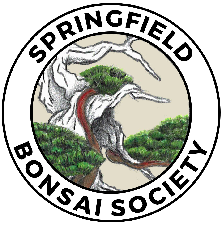 Springfield Bonsai Society