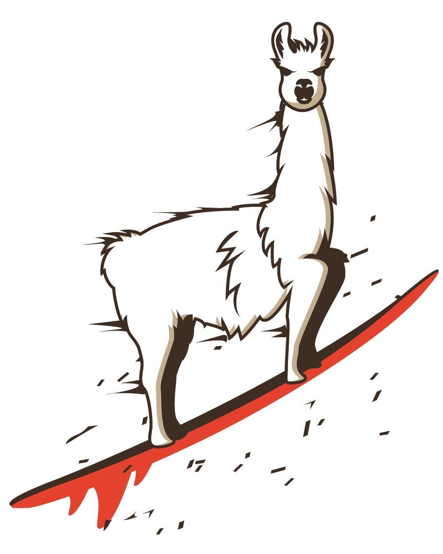 Llama only.jpg