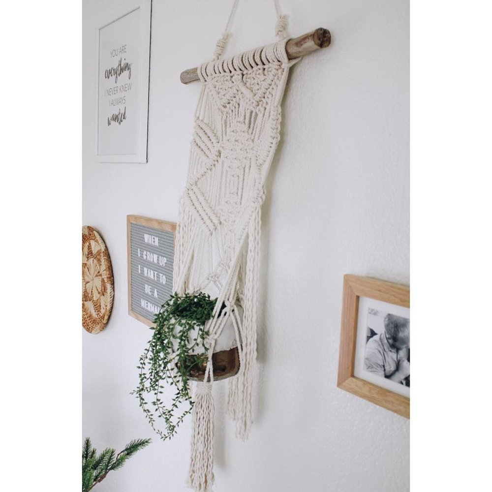 Wall Hanging with plant hanger on natural driftwood  $80