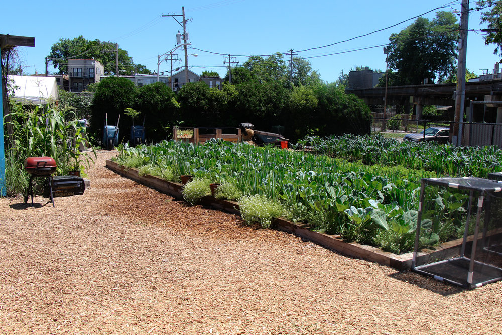 The garden is split into 3 aggregation groups