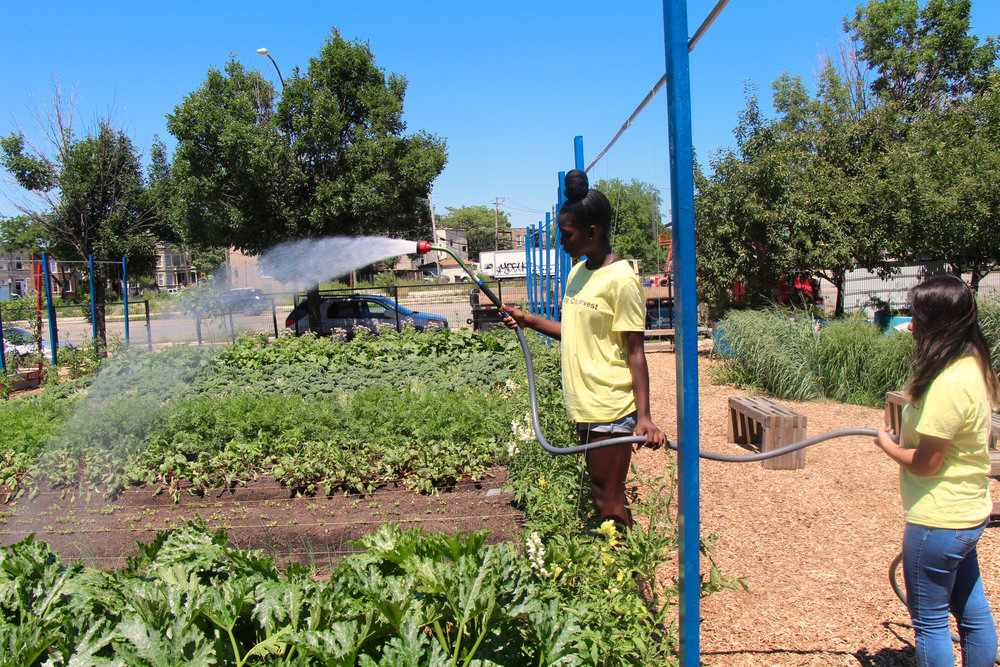 Keely Coates(left) and Melanie Franco (right) help water the vegetables to keep them fresh.