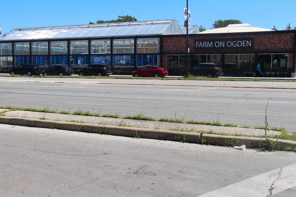 The Farm On Ogden (Outside)  located on the cross streets of Ogden and Central Park