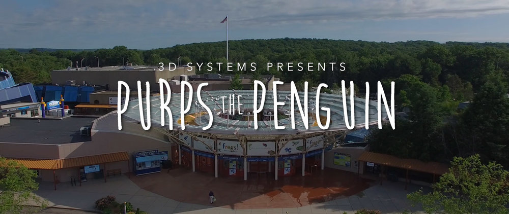 Purps_the_Penguin_Still_Digital_Spark_Studios_Charlotte_NC_Video_Production1.jpg