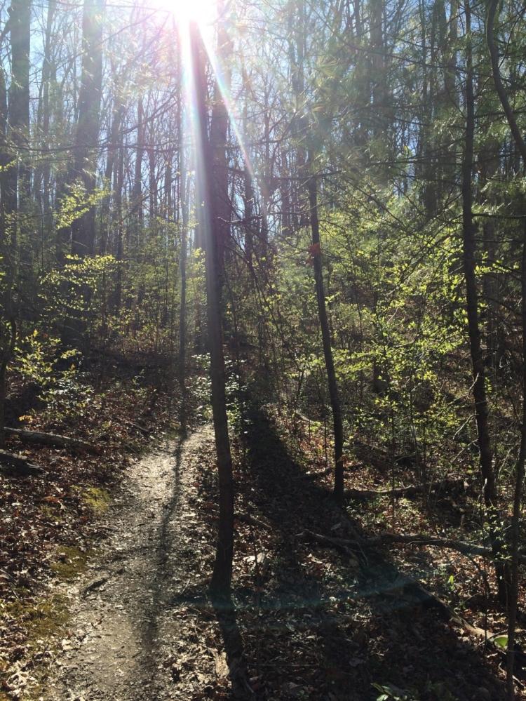 Church in woods.jpg
