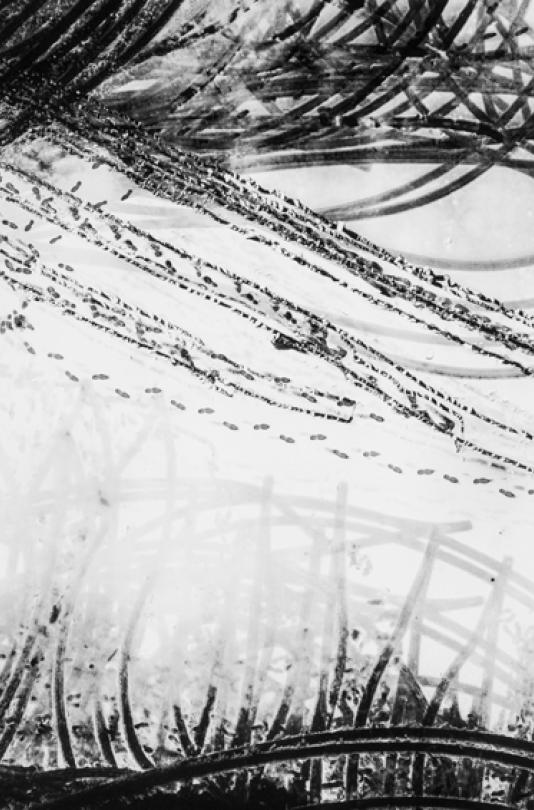 Traces-DT-0317-064-67x100cm