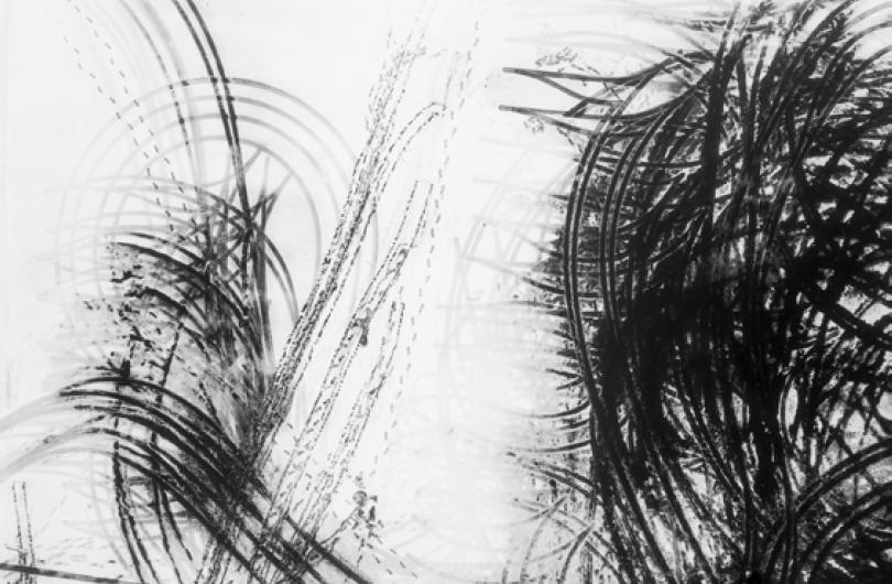 Traces-DT-0317-056-150x100cm