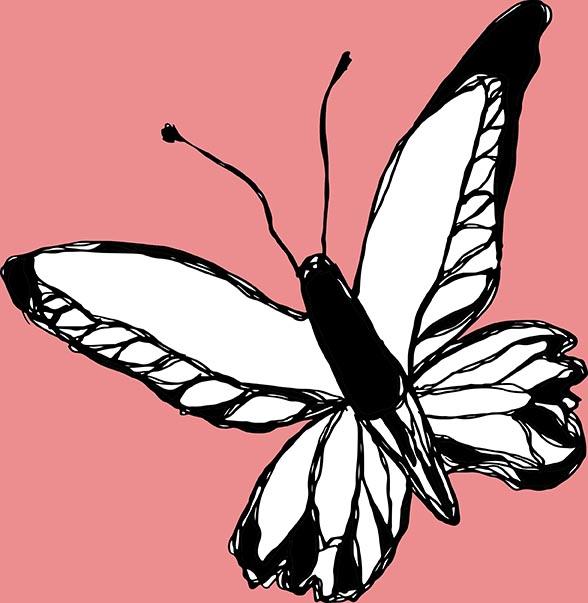 Pink Butterfly by Rebecca Johnstone