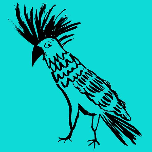 Cocktaoo illustration, Rebecca Johnstone