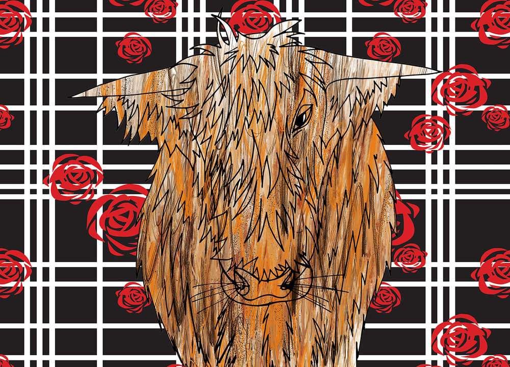 Highland Cow illustration with patterned background, Rebecca Johnstone