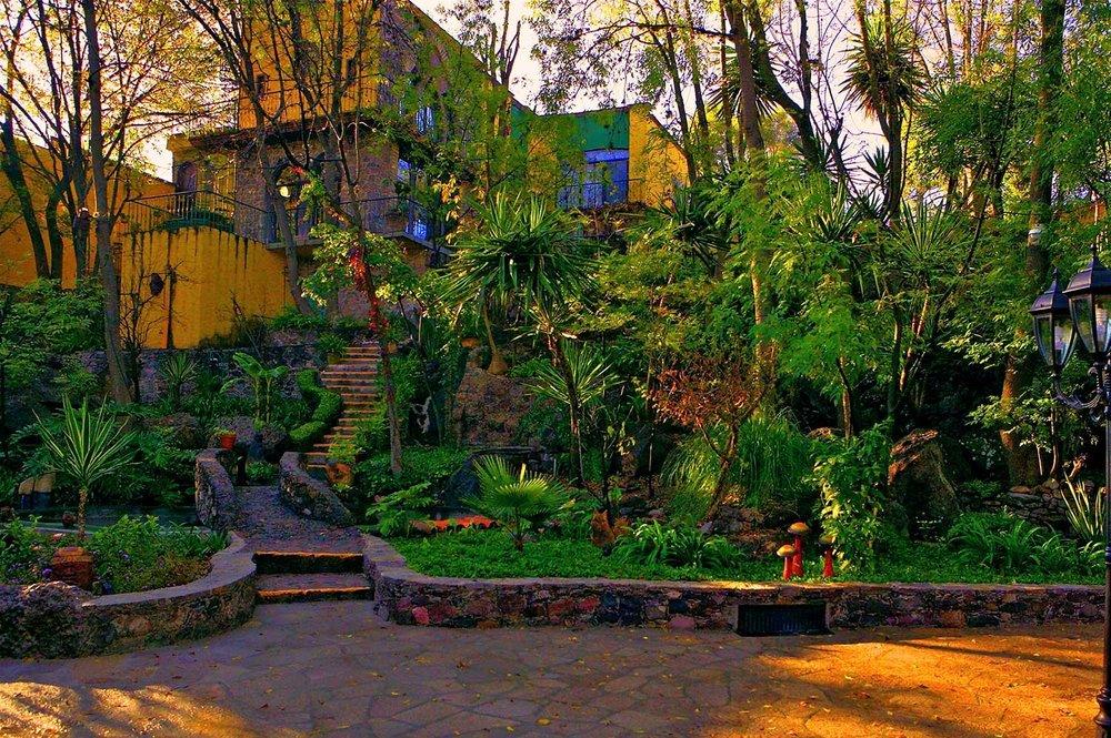 La-Casa-de-la-Rosa-Rosa-backyard1-e1446369454271.jpg