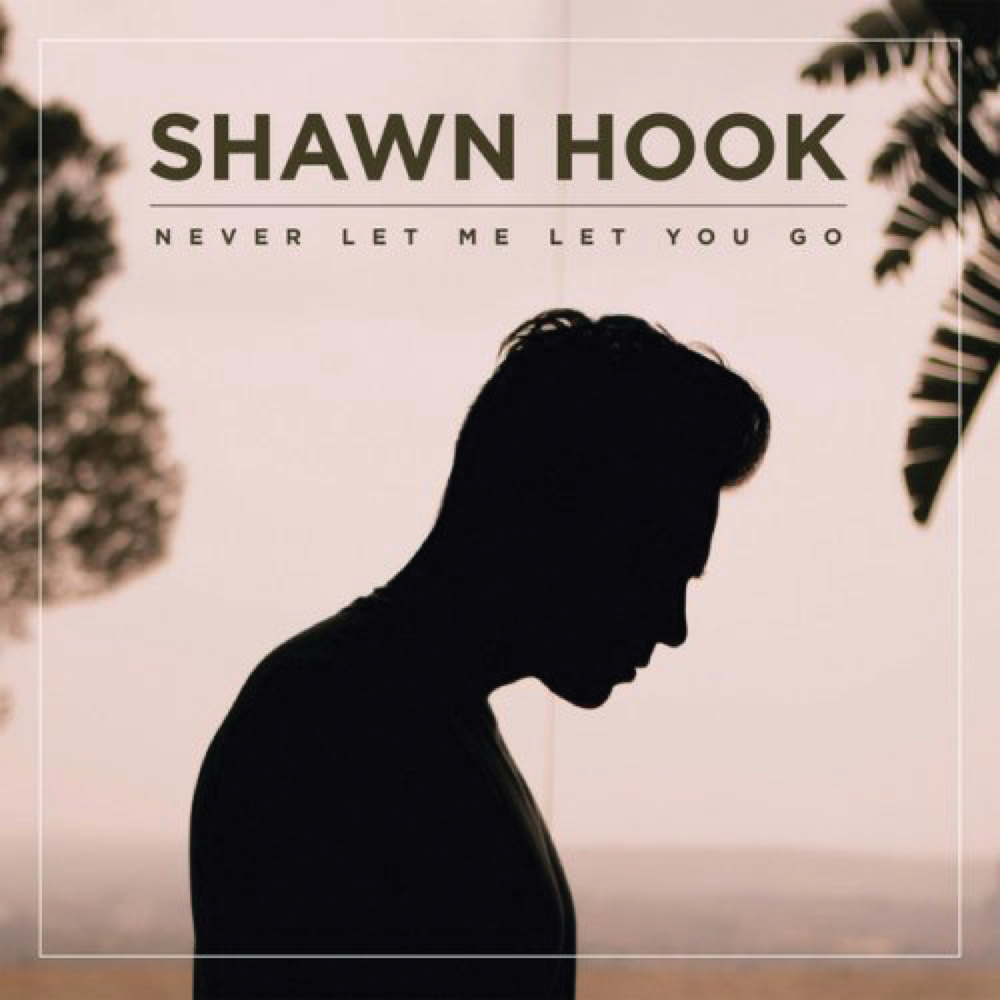 1916 THUMBNAILS_Never Let Me Let You Go - shawn hook.png