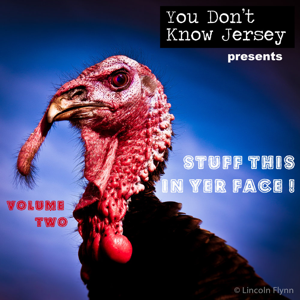 YDKJ Angry Turkey.jpg