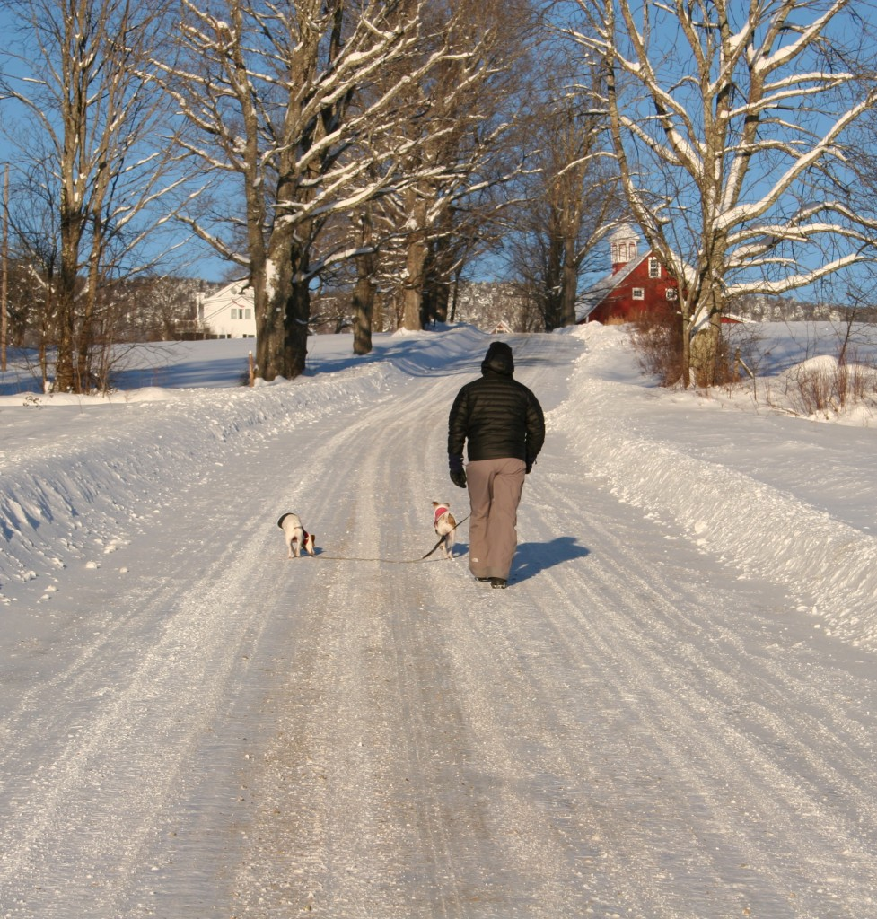 Chilly Walk.