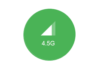 4.5G.png