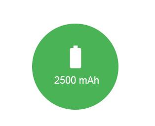 2500-mAh-Battery.jpg