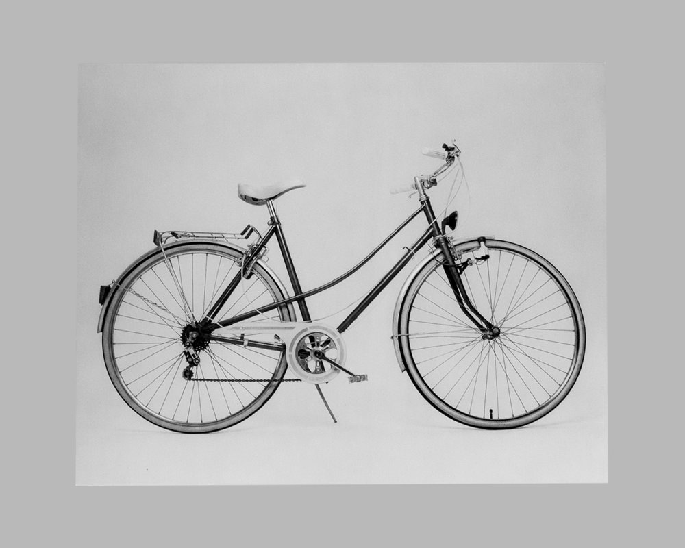Fahrrad Barbara Riegler.jpg
