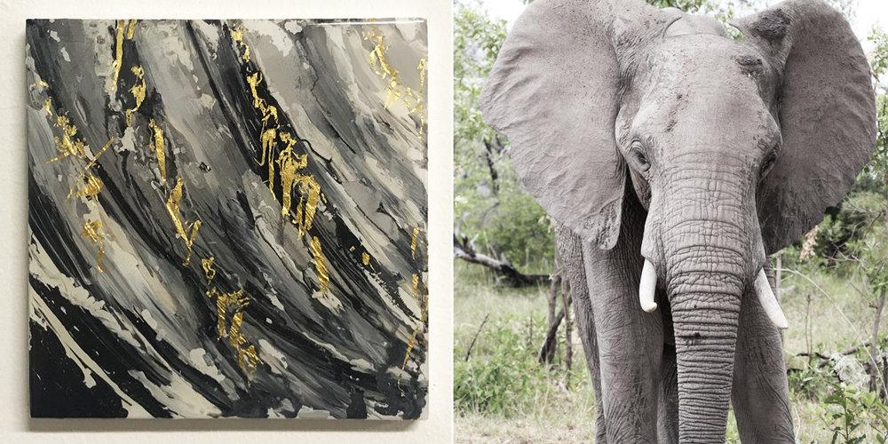 """Majestic Indlovu"" & The Elephant /Kruger National Park, South Africa"