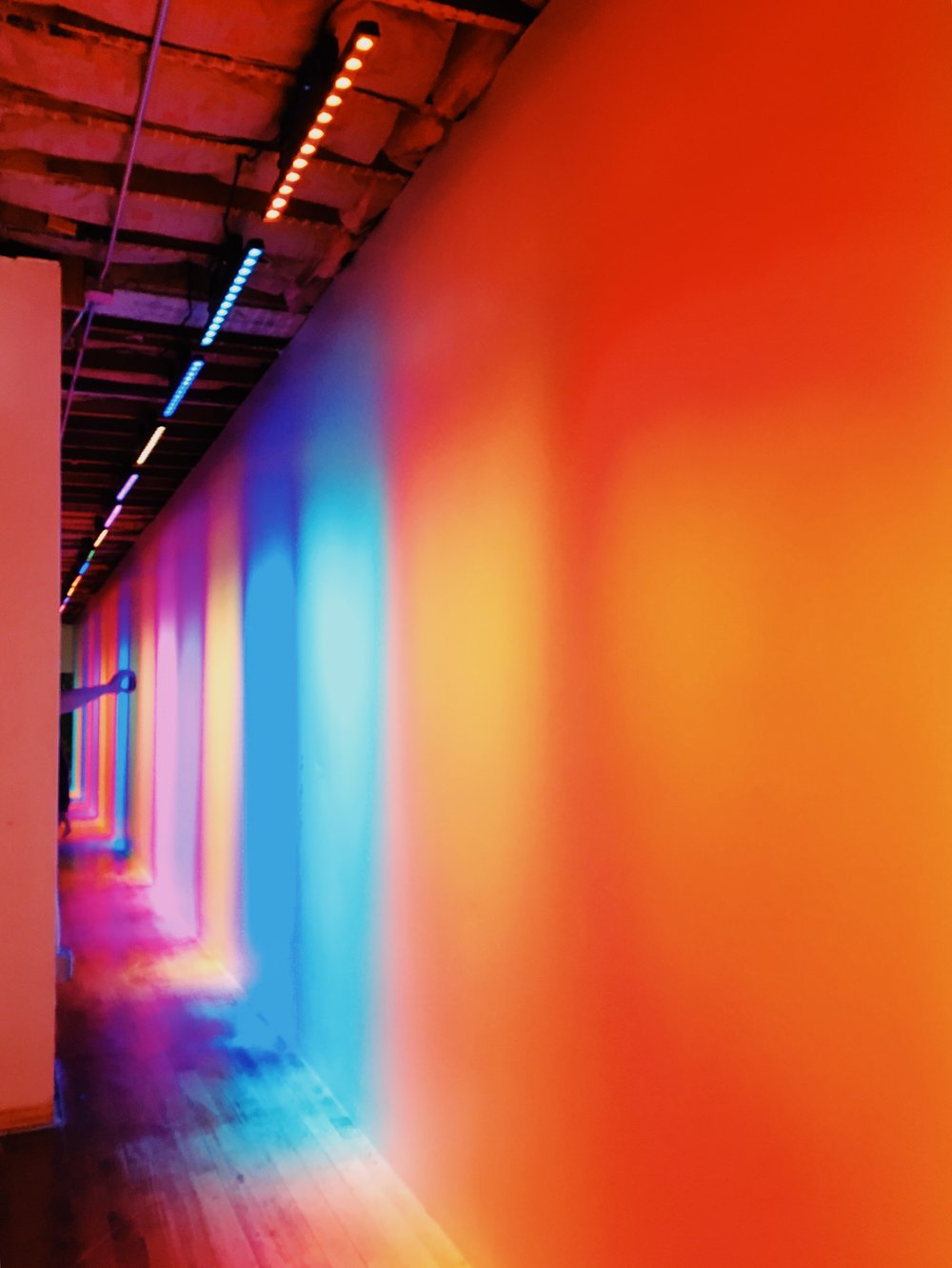 Even the hallways were decked in color