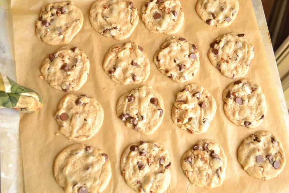 chocolate chip walnut cookies on pan.jpg