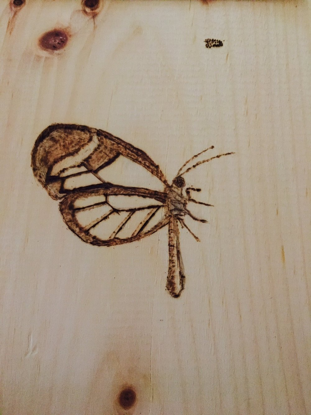 Woodburning design by me