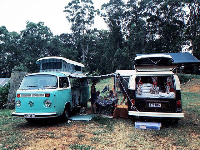 Mrs Dolphin and friends. 📸 @snow_pea . . #vw #kombi #campervan #volkswagen #vanlife