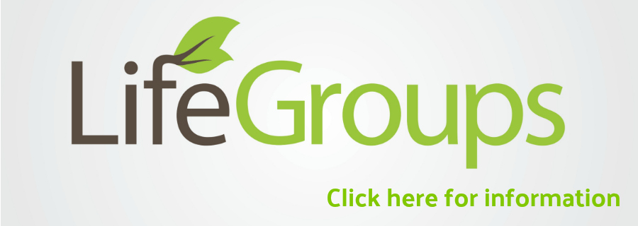 Life Groups for Website.jpg