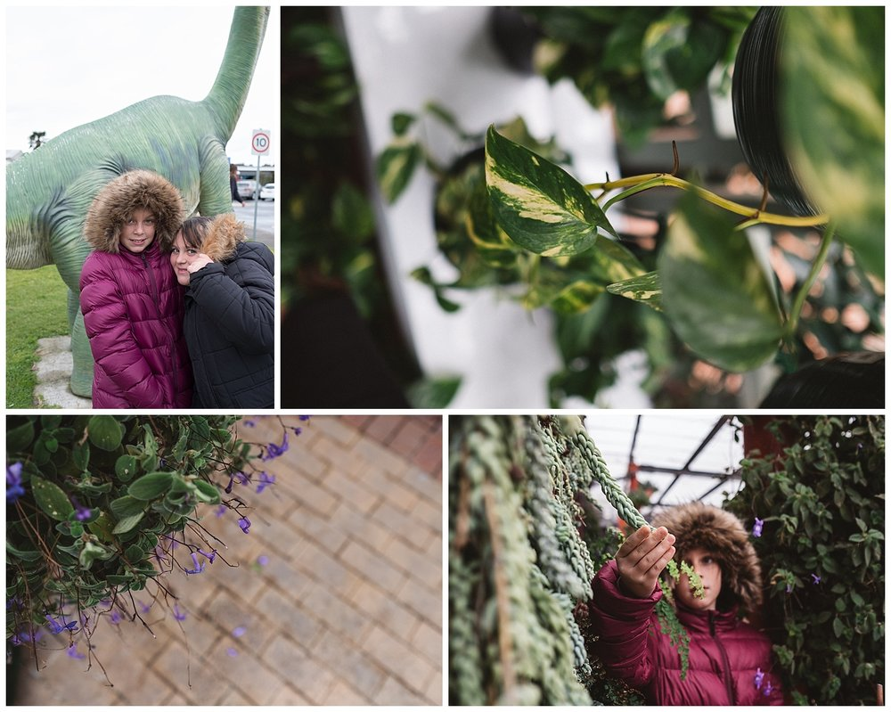 melbourne lifestyle photographer and gardening centre
