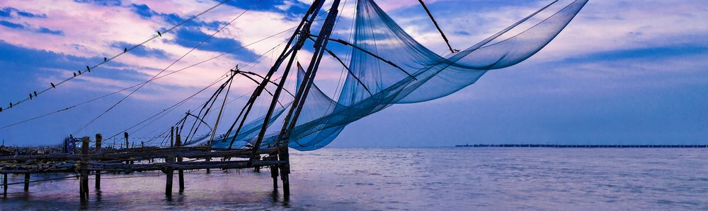 Kochi's fabled Chinese fishing nets occupy a frame during sunset
