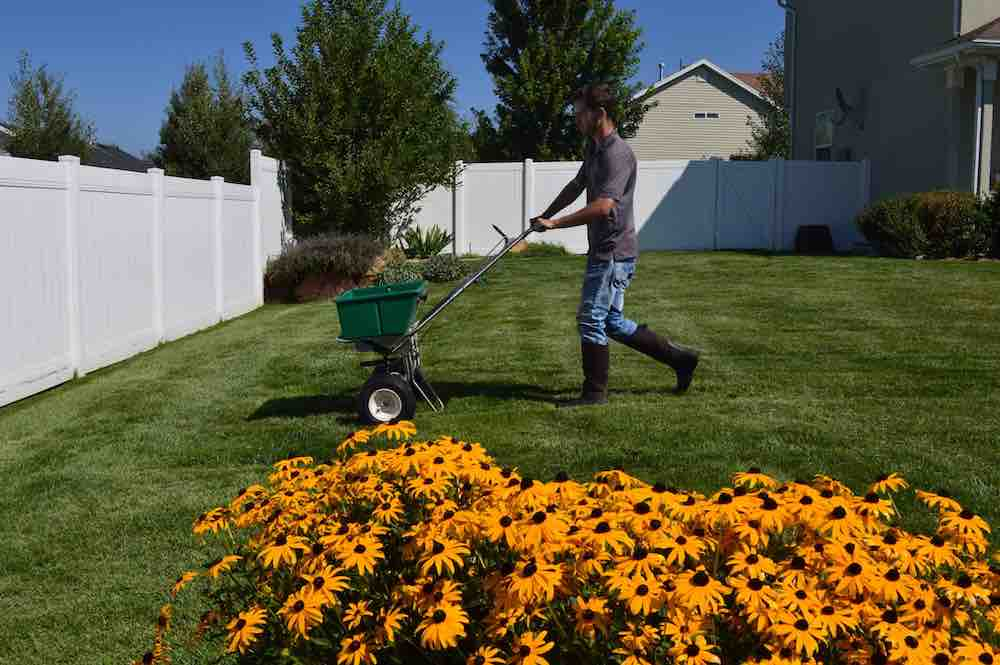 Lawn Fertilization -