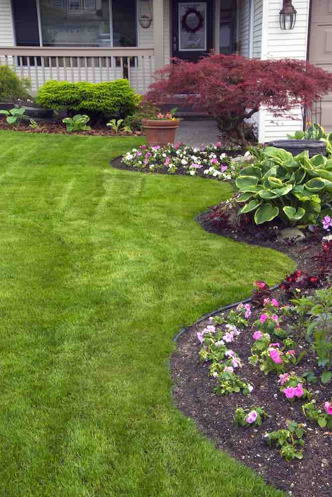 Bed Weed Control -