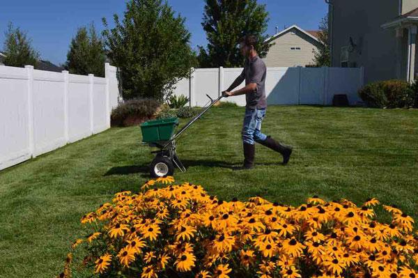 Lawn Fertilization -