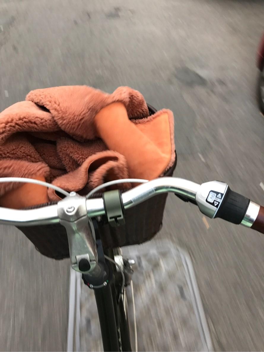 Min nye cykel, bedste investering.