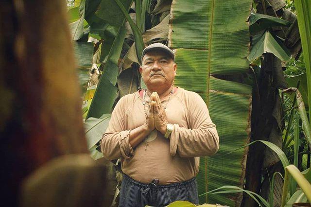 We welcome all 🌴🙏🌍 #ayahuasca #ayahuascaretreat #ayahuascaperu #ayahuascaretreats #plantatree #medicine #plantmedicines #iquitos