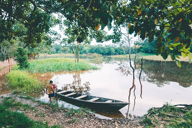 Down by the river 💦  #medicine #ayahuasca #ayahuascaretreat #plantmedicines #ayahuascaperu #ayahuascaretreats #plantatree #iquitos