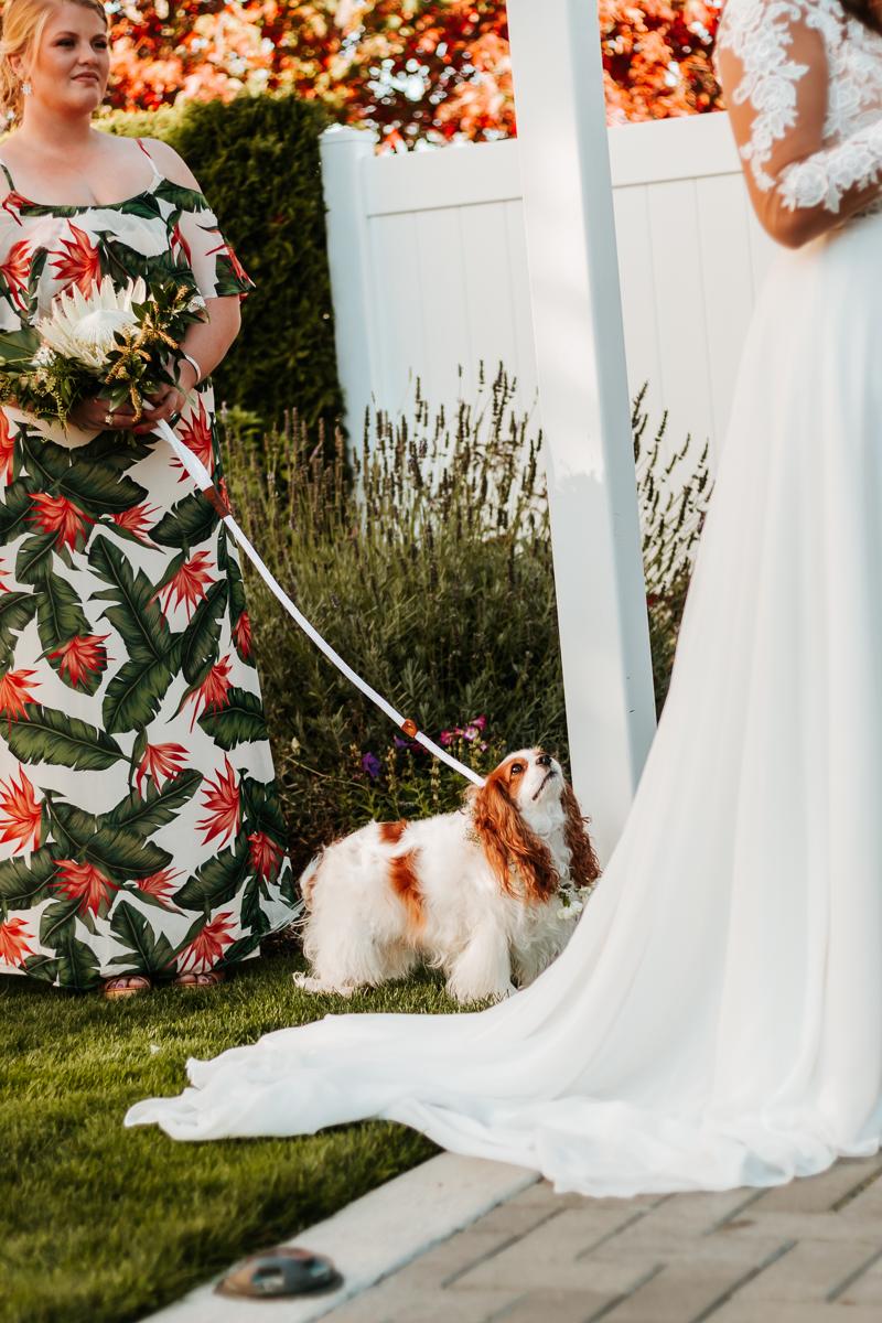 anacortes_wedding-9449.jpg