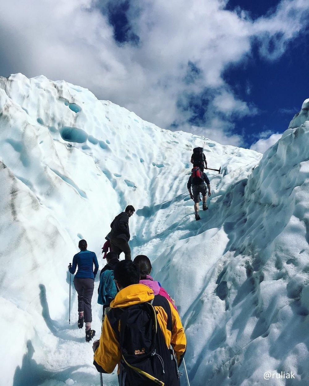 the-magnificent-fox-glacier.jpg