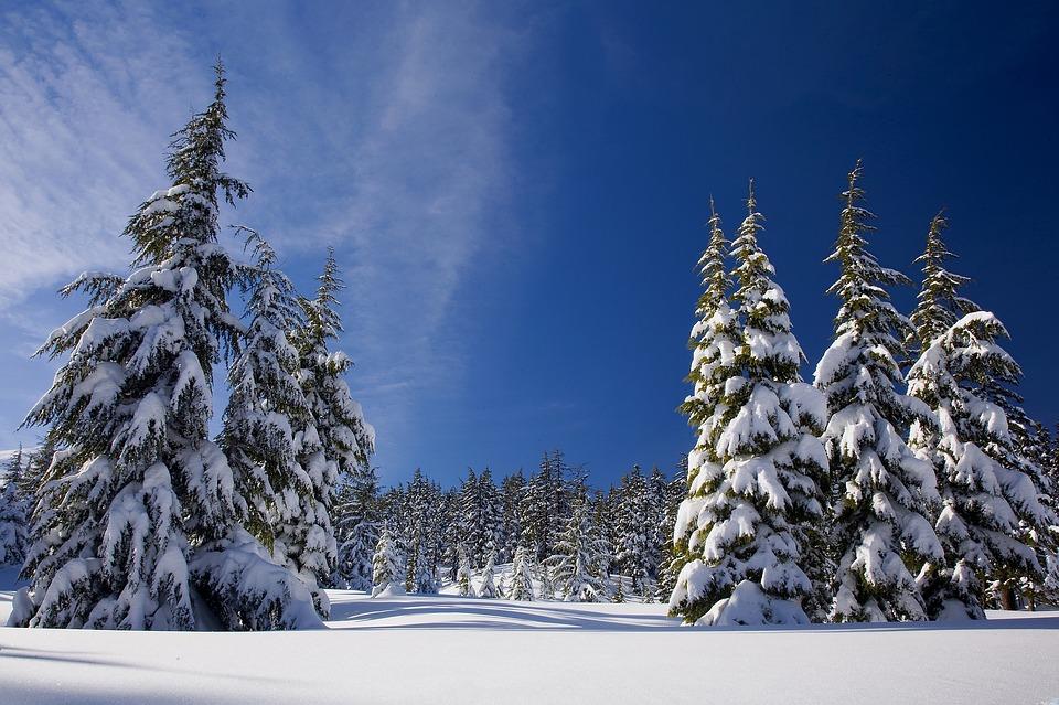 snow-1902052_960_720.jpg